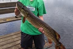 Nicholas Lemke, age 13, Chicago, 40-inch tiger (first musky), Bolton Lake, WI.