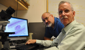 Cornell University researcher Dr. Paul Bowser (right) and New York Sea Grant Fisheries Specialist Dave MacNeill received the first Sea Grant Association Research-to-Application Award for the practical application of Viral Hemorrhagic Septicemia Virus research in a real-world setting. The virus has caused significant mortality events in a wide diversity of fish species in the Great Lakes basin. Photo: Cornell University